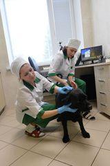 Клиника УВЛ Металлургического района, фото №3